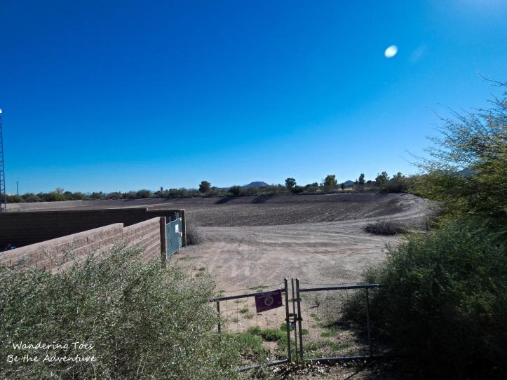 Water Recharge pond along the Santa Cruz River